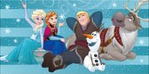 Disney Frozen Family - Strandlaken - 75 x 150 cm - Multi