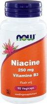 Niacin Flush Free 250Mg Now
