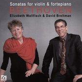 Beethoven Sonatas For Violin & Fort