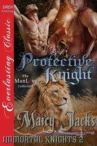 Protective Knight