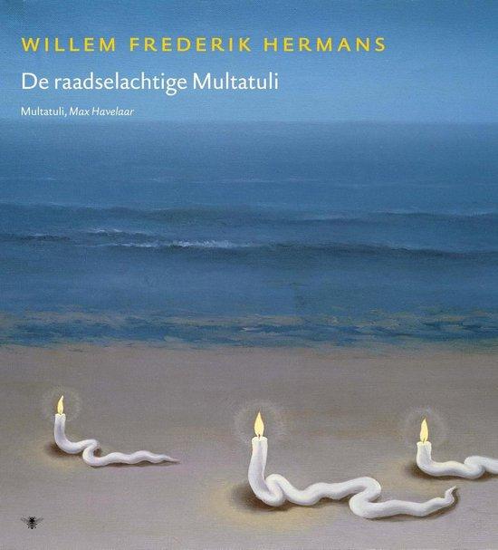 Boek cover Volledige werken van W.F. Hermans 17 -   Volledige werken 17 van Willem Frederik Hermans (Hardcover)
