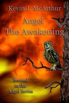 Omslag Angel The Awakening
