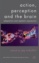 Action, Perception and the Brain