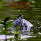 Sluimerend Dynamiet 2.0 - Het testament ( Karper )