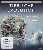 David Attenborough: Tierische Evolution/Blu-ray