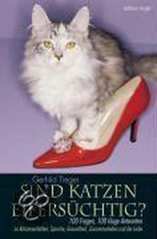 Sind Katzen eifersüchtig?