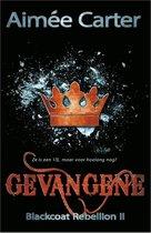 Blackcoat rebellion 2 -   Gevangene