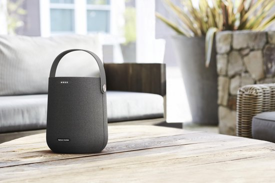 Harman Kardon Citation 200 Portable Grijs - Portable Smart Speaker