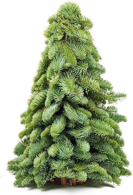 Mini Nobilis Kerstboompje 30cm