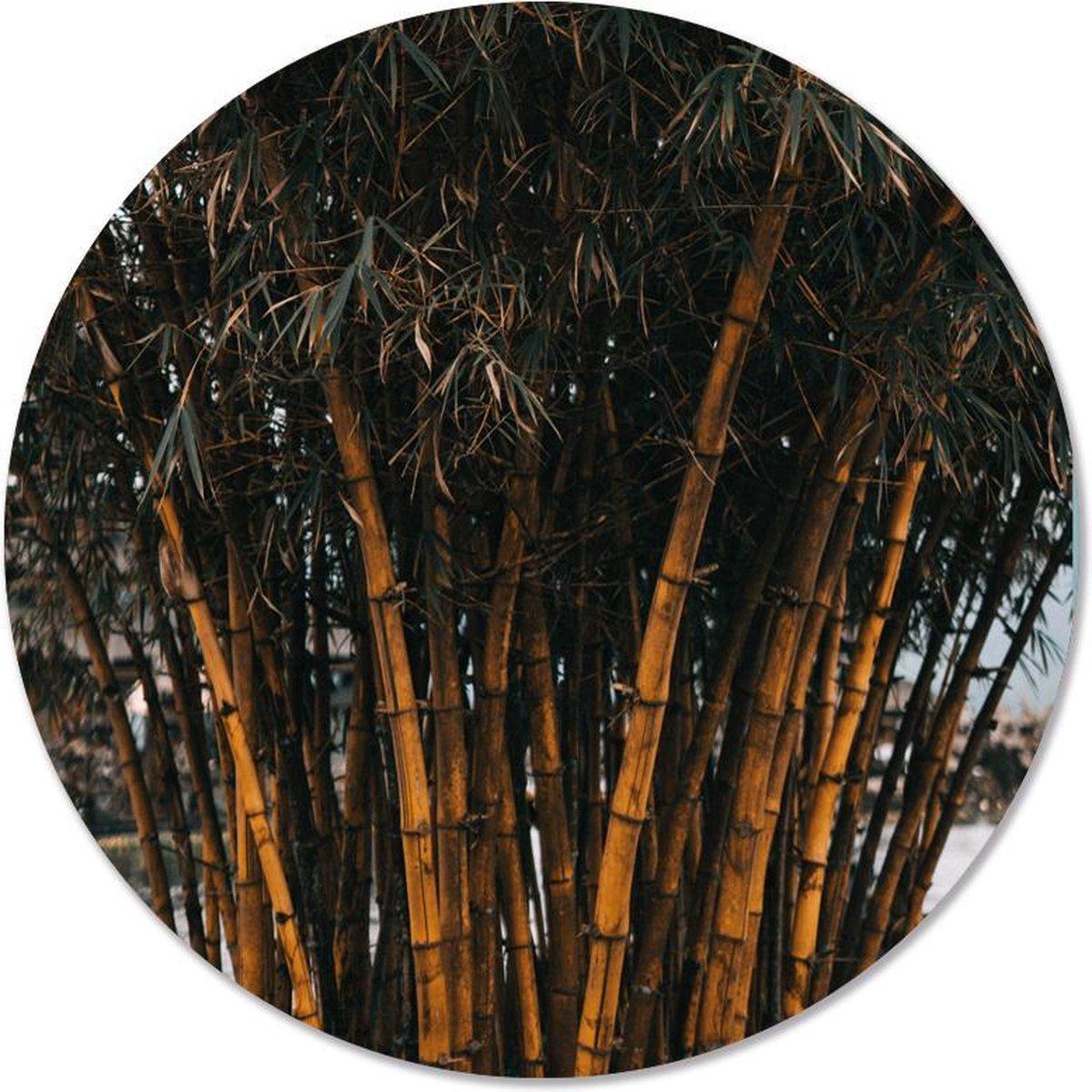 Label2X Muurcirkel bamboo - Ø 12 cm - Dibond (binnen & buiten)