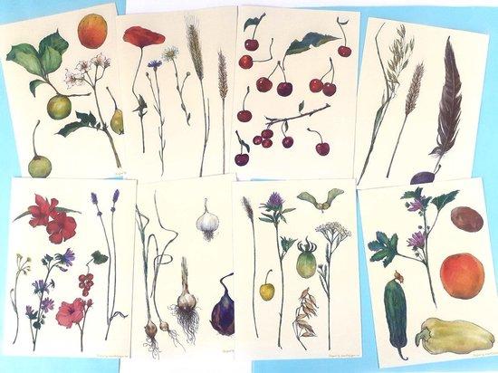 "Set van kleine Happy Home ""Natuur""-posters - 8 A4 posters per set"