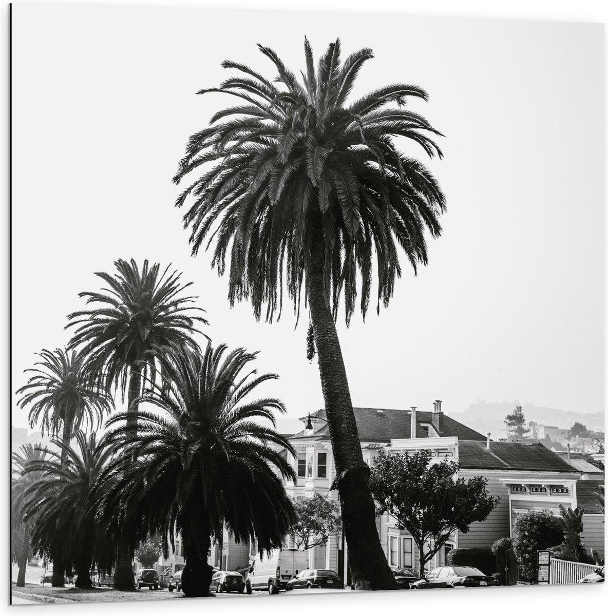 Dibond - Vakantieplekje met Palmbomen (zwart/wit) - 100x100cm Foto op Aluminium (Met Ophangsysteem)