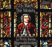 The Motets