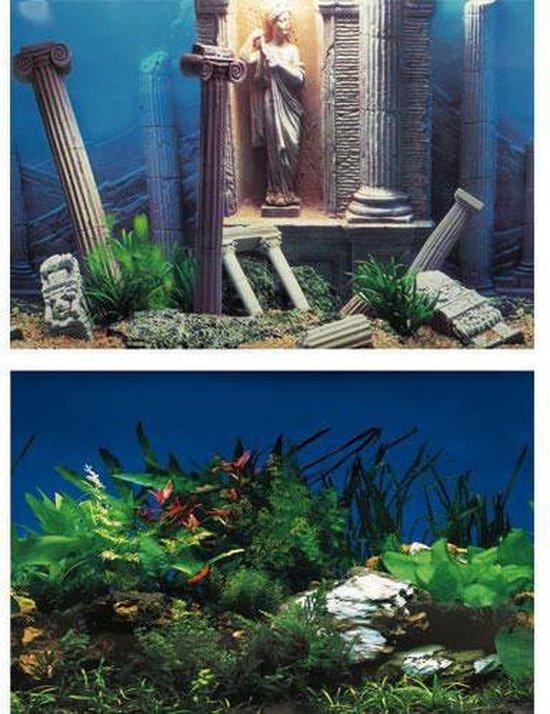 Superfish Deco Poster Nr 5 60 X 30 Cm