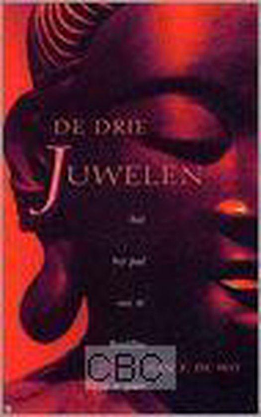 De Drie Juwelen - H.F. de Wit pdf epub
