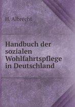 Handbuch Der Sozialen Wohlfahrtspflege in Deutschland
