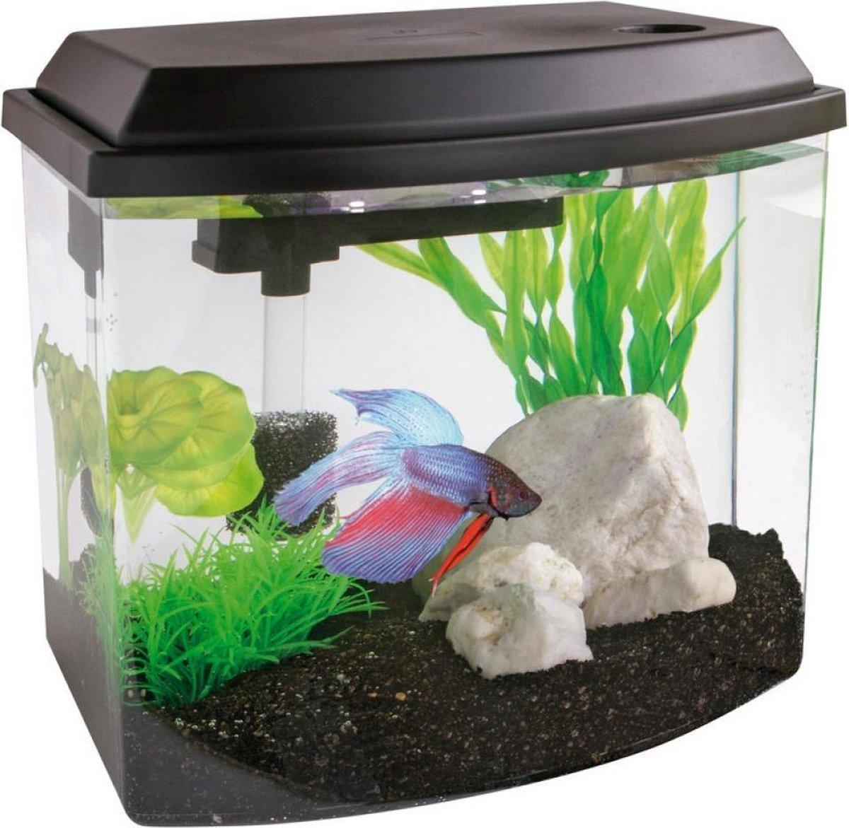 Superfish cascade Aquarium - 25x15x21.5 cm - 9.5L - Zwart - SuperFish