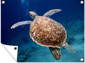 Zeeschildpad Tuinposter 120x90 cm - Tuindoek / Buitencanvas / Schilderijen voor buiten (tuin decoratie)