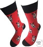 Verjaardag cadeautje voor hem en haar - Hond afbeelding - Bulldog sokken - Leuke sokken - Vrolijke sokken - Luckyday Socks - Sokken met tekst - Aparte Sokken - Socks waar je Happy van wordt - Maat 36-41