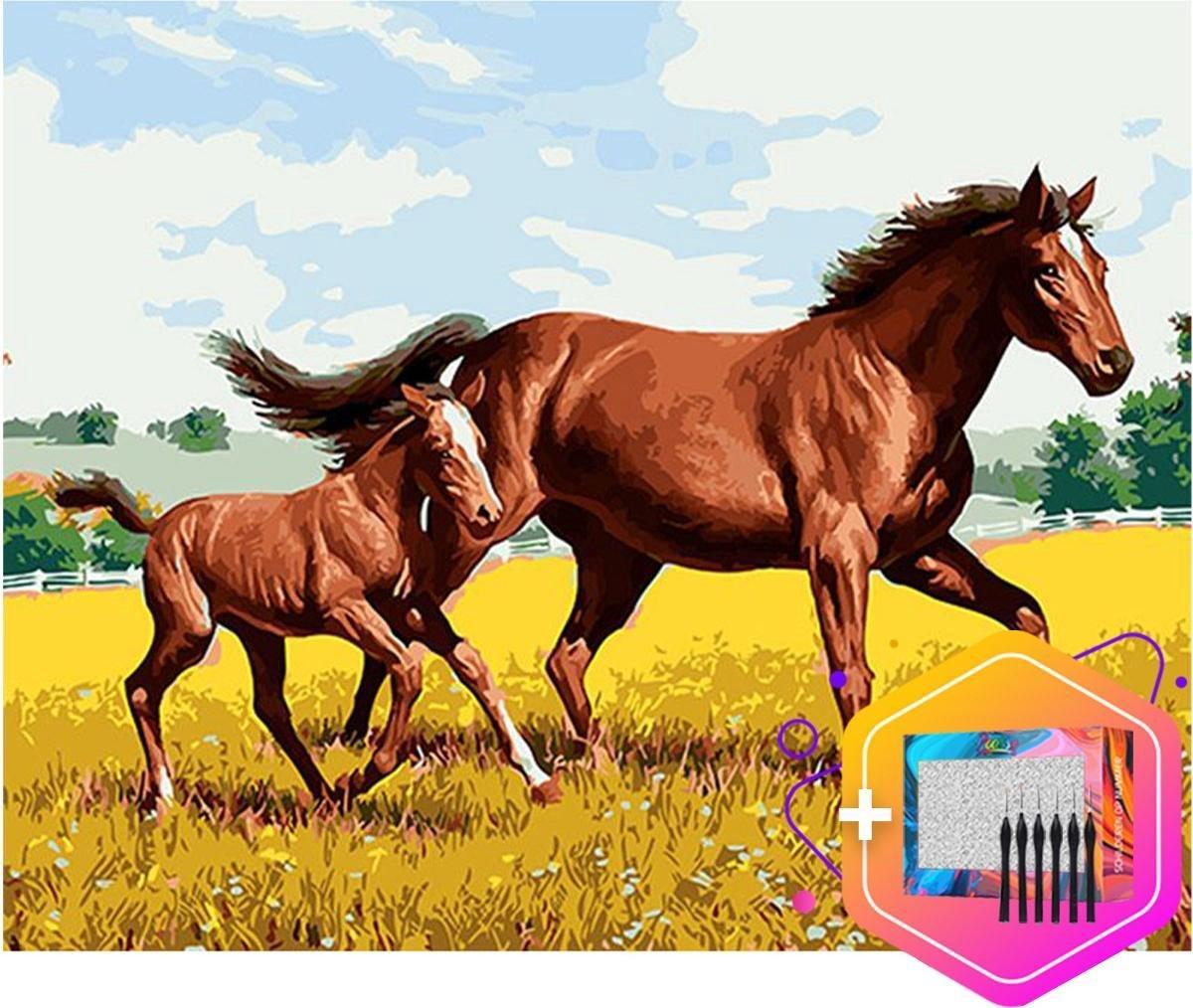 Pcasso ® Paard Veulen - Schilderen Op Nummer - Incl. 6 Ergonomische Penselen En Geschenkverpakking - Schilderen Op Nummer Paard - Schilderen Op Nummer Dieren - Schilderen Op Nummer Volwassenen - Canvas Schilderdoek - Kleuren Op Nummer - 40x50 cm -