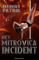 Falcon Boeken 1 -   Het Mitrovica Incident