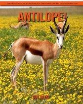 Antilope! Ein pädagogisches Kinderbuch über Antilope mit lustigen Fakten