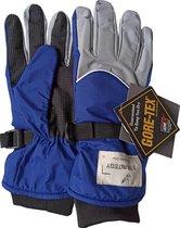 GORE-TEX® Outdoor strategy fiets wandel ski motor handschoen inclusief liners warm en 100% waterdicht Maat S