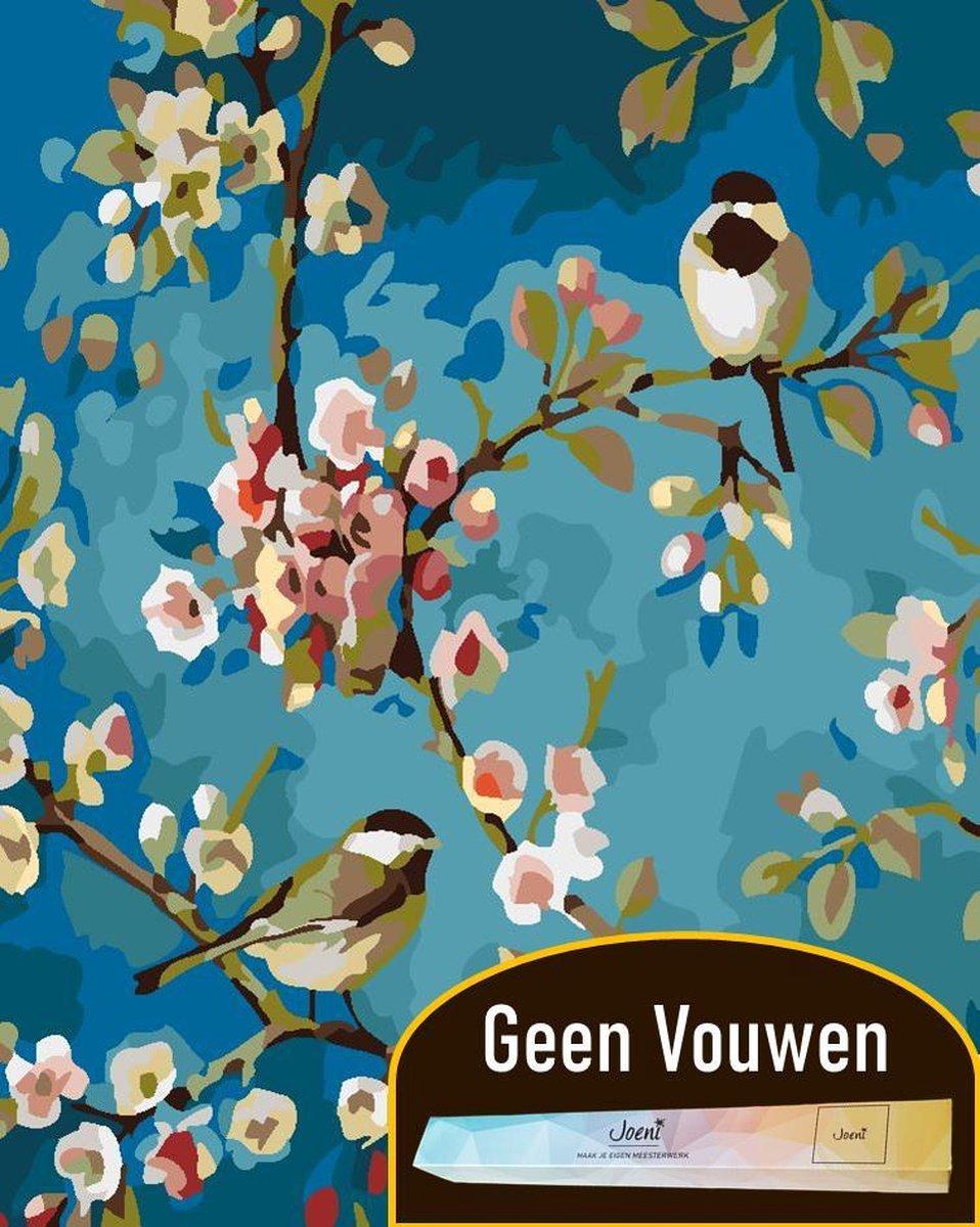 Joeni® Schilderen Op Nummer - 40x50 cm - Dieren: Vogels tussen Bloemen - Volwassenen