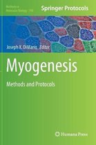 Myogenesis