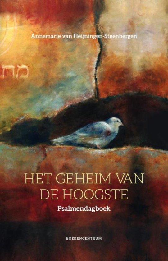 Het geheim van de Hoogste - Annemarie van Heijningen-Steenbergen | Fthsonline.com