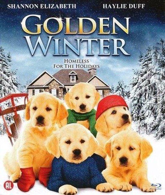 Cover van de film 'Golden Winter'