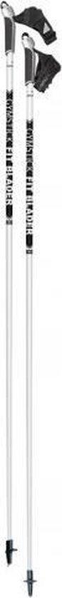 Gymstick - Fit Blader - Nordic Blading - 175cm
