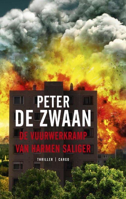 De vuurwerkramp van Harmen Saliger - Peter de Zwaan |