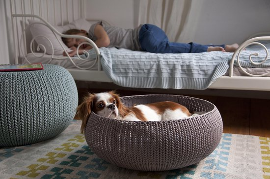Curver Cozy Pet Bed - Crème - Kattenmand - Ø 50 cm