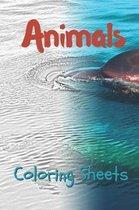 Animals Coloring Sheets