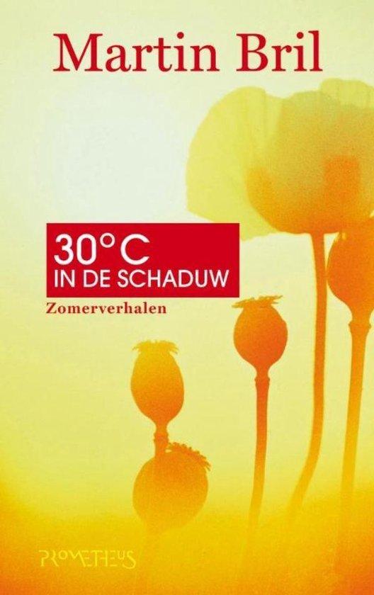 Dertig graden in de schaduw - Martin Bril  