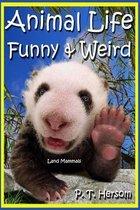 Animal Life Funny & Weird Land Mammals