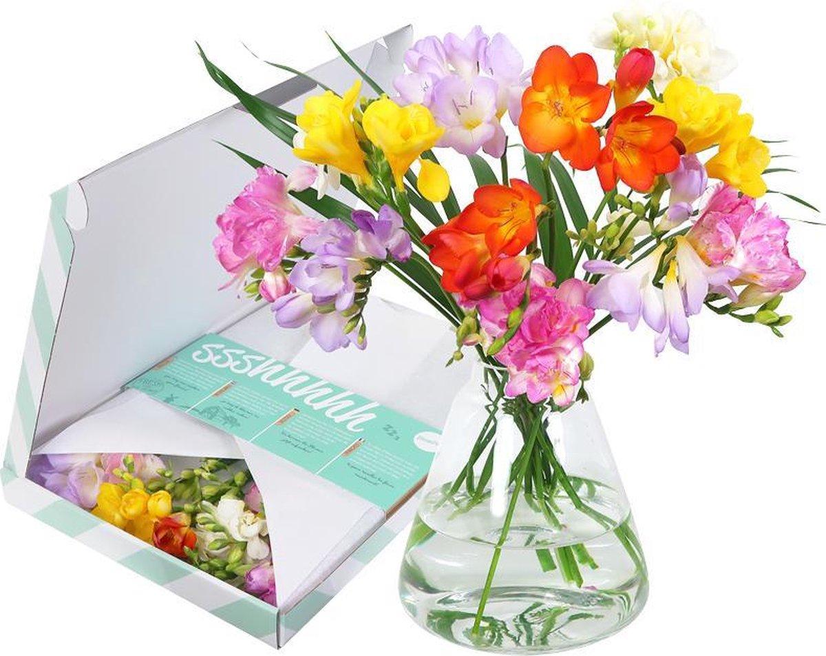 Happy Breeze   Freesia mix   Brievenbus bloemen   BloomPost