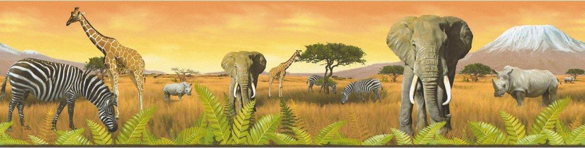 JUNGLE DIEREN BEHANGRAND - Meerkleurig Geel Oranje - AS Creation Only Borders