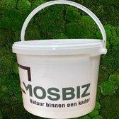 MosBiz   Mos  Lijm  5kg  Decoratie  Hobby   Knutselen   Plakken