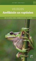 Veldgids Amfibieen en Reptielen