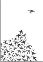 Zwart wit poster Zwerm vogels DesignClaud - Hoek - B2 poster