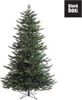 Black Box Macallan Pine Kunstkerstboom - 230 x 140 cm - Groen