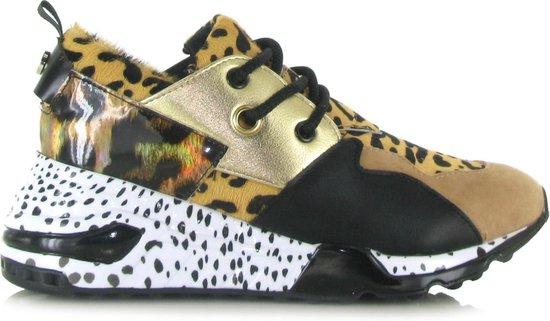 Steve Madden Dames Sneakers Cliff Sneaker - Bruin - Maat 37 Rg5X3pHI