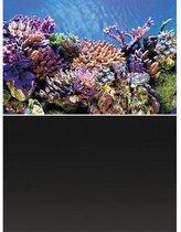 Superfish Poster - Aquarium Deco achterwand 1 - Afmeting: 150 x 61 cm