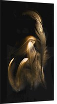 Gouden veren op zwarte achtergrond - Foto op Plexiglas - 60 x 90 cm