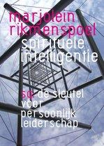 Spirituele inteligentie