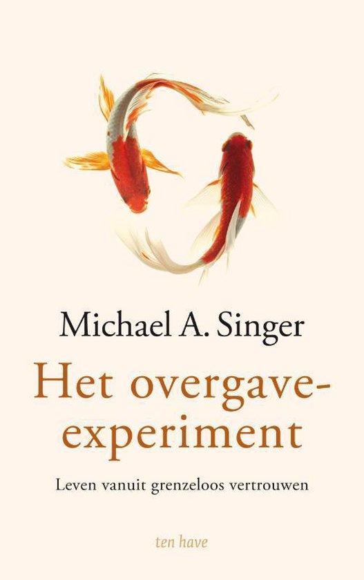 Het overgave-experiment - Michael Singer |