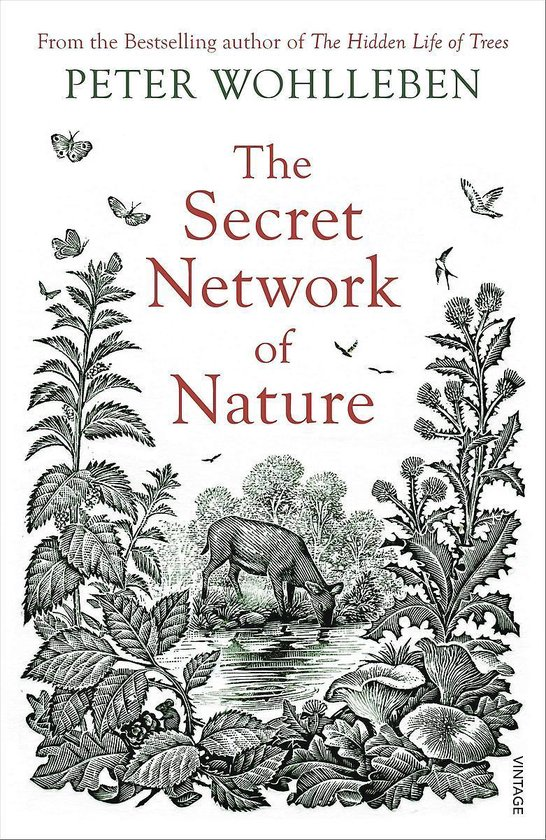 Boek cover The Secret Network of Nature van Peter Wohlleben (Paperback)