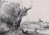 Placemat: De Omval, Rembrandt van Rijn, Museum Het Rembrandthuis